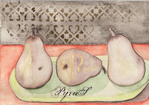 VSD-KL-pears-web