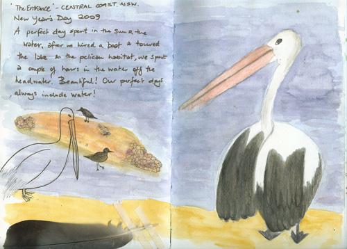 Pelicans-web