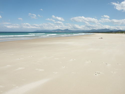 9 mile beach Tasmania