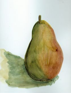 Pear-in-shellac